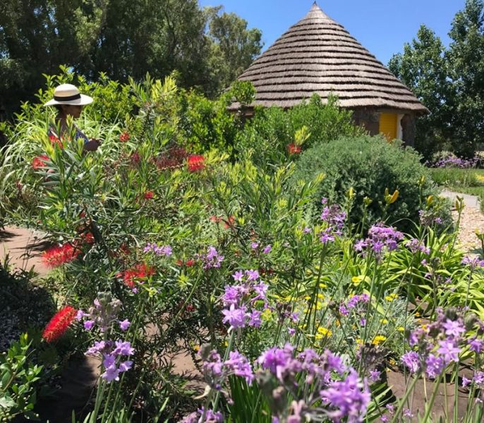 Landscape and herb gardens Is Cheas